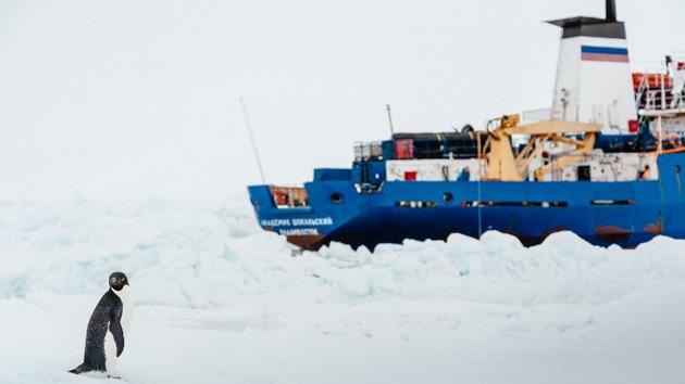 El barco ruso avanza saliendo de la trampa helada en la Antártida