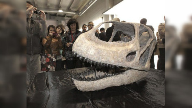 Presentado en España el cráneo del dinosaurio más grande de Europa