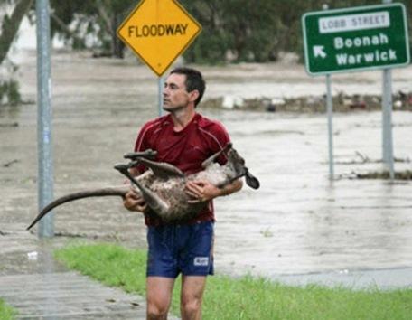 Australia, bajo el agua
