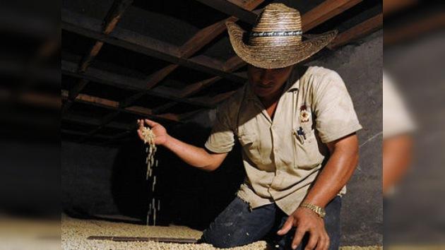 El sector agrícola en Colombia, campo de combate de transnacionales y campesinos