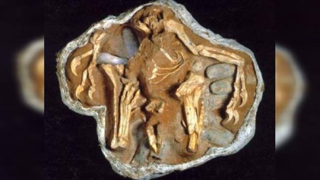 Un ladrón de huevos de dinosaurio fue condenado a tres años