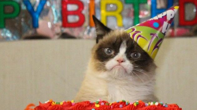¡Arriba esos ánimos! ¡Es el cumpleaños de 'Grumpy Cat', el gatito gruñón!