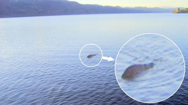 Sale a flote la 'mejor foto' del monstruo del Lago Ness
