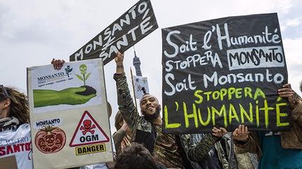 Marchas contra Monsanto por todo el mundo el 25 de Mayo 2013 06f2c1b849a17030af7a9291d93ae78b_article430bw
