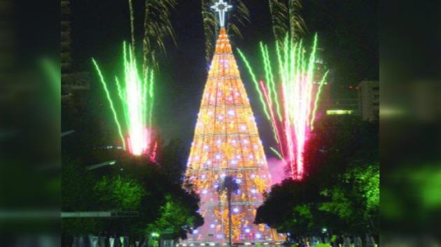 El árbol navideño mexicano logró entrar en el Libro Guinness