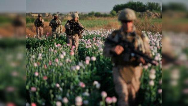 'Bombardeo' de dólares para tapar el pozo de la droga afgana