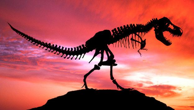 Los científicos confirman el descubrimiento de tejido orgánico de dinosaurio