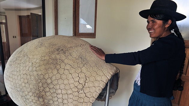 El viento deja al descubierto en Bolivia el mayor yacimiento de fósiles de Sudamérica