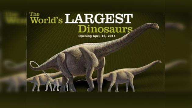 """Los dinosaurios no se extinguieron, afirman científicos que """"revivieron"""" a gigante"""