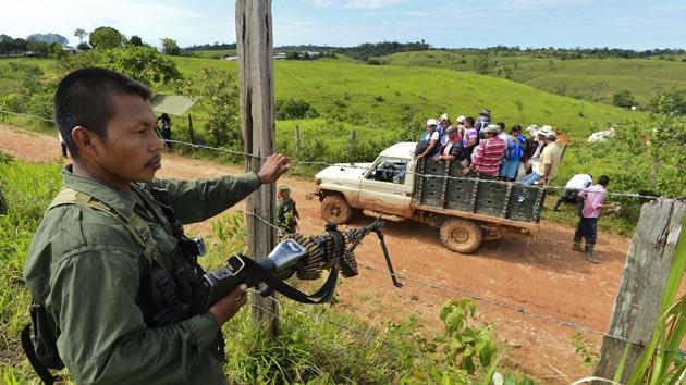 Las FARC obligan a los campesinos a sembrar marihuana