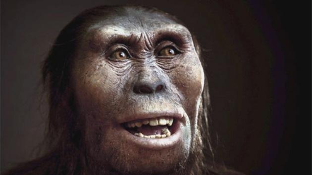 Hallan restos de Neandertal de 200.000 años de antigüedad en el Pirineo catalán
