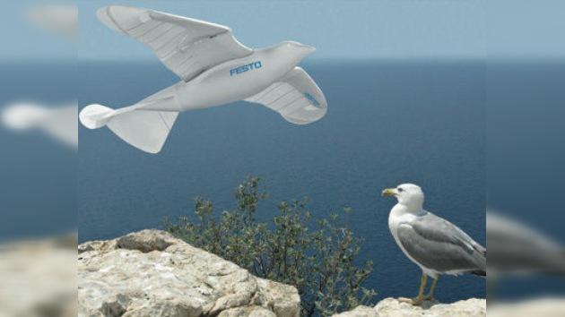 SmartBird: la gaviota robótica