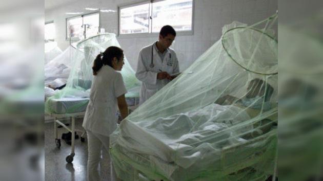 Este año 35 paraguayos murieron por el dengue