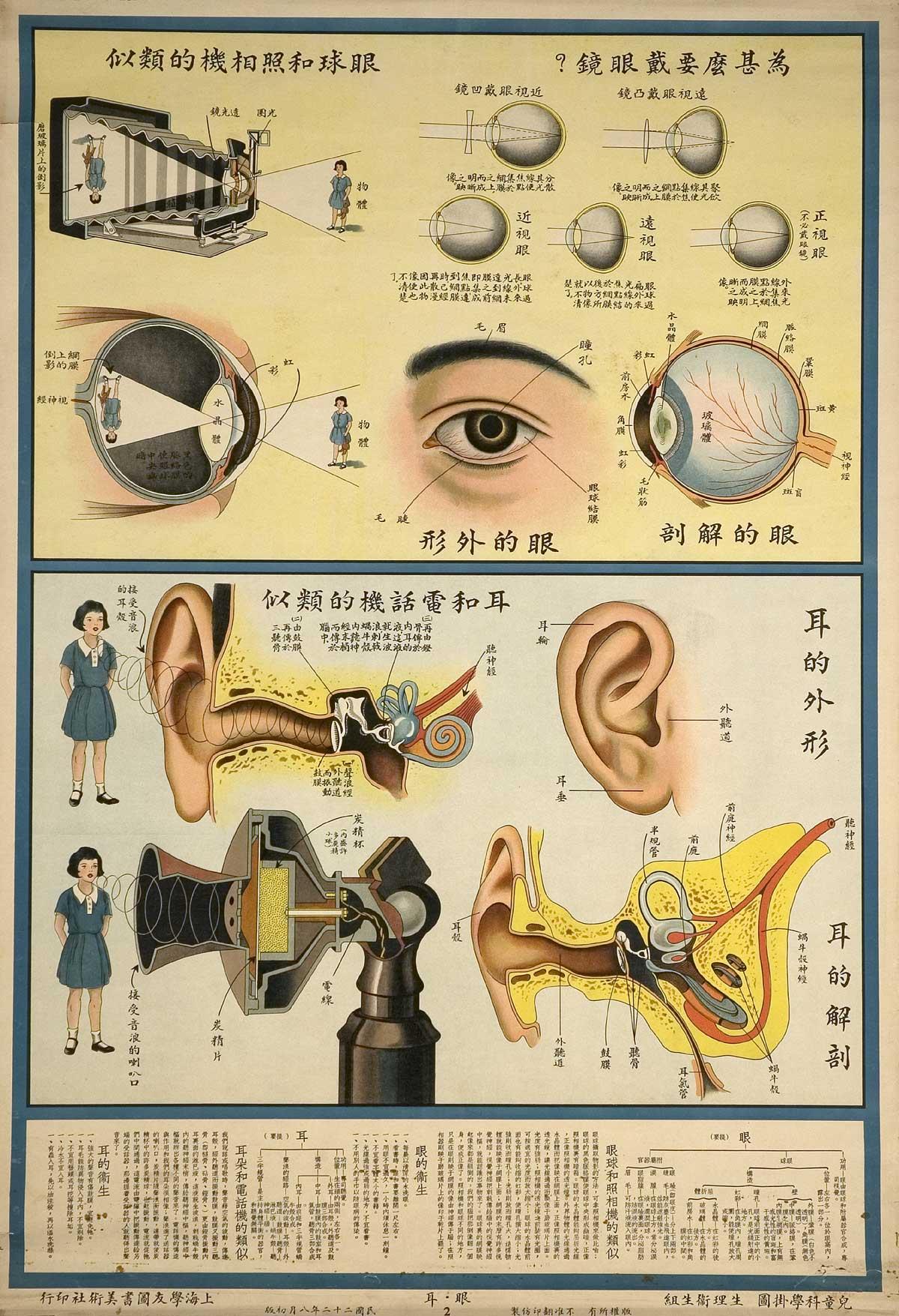 Fotos: Anatomía \'made in China\': El cuerpo humano funciona como una ...