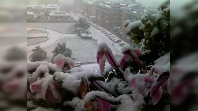 El Coliseo de Roma cierra por la nieve