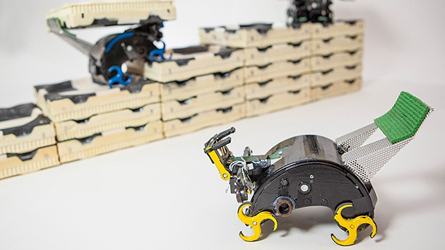 Video, fotos: Nacen los robot 'termita' que construirán colonias en otros planetas