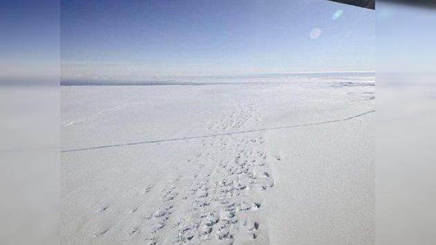 Un pesquero ruso se hunde entre los hielos de la Antártida