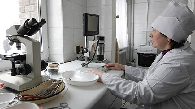 ¿Los nervios no se regeneran? Científicos rusos demuestran que sí