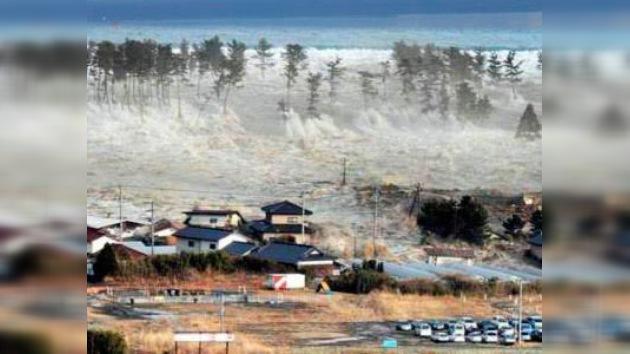 ONU: 2011 batió el récord de pérdidas por catástrofes naturales