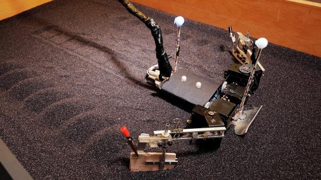 Crean un robot tortuga que puede correr sobre la arena