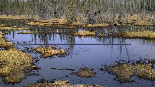 Más de 3.000 barriles de crudo, vertidos en un importante río de Canadá
