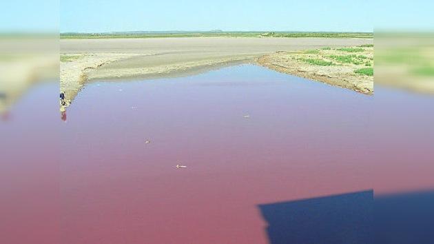 ¿Otra 'matanza de Texas'? Un lago del estado texano aparece teñido de rojo