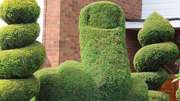 En el Reino Unido una persona se siente insultada por un arbusto