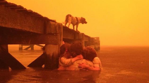Fotos: Dos abuelos salvan a sus cinco nietos de un incendio manteniéndolos en el agua