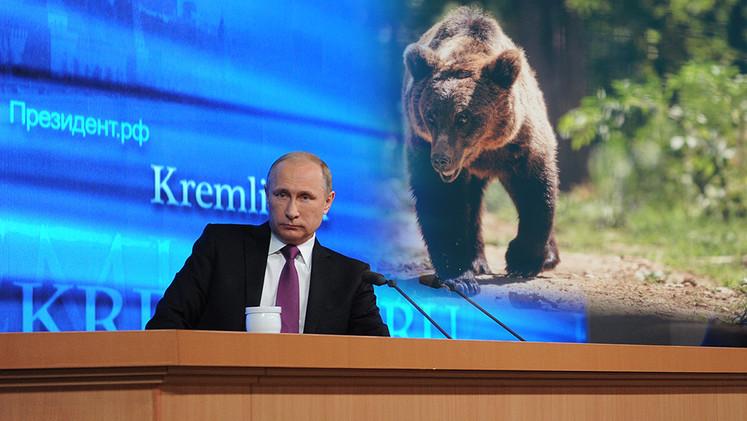 Putin y oso