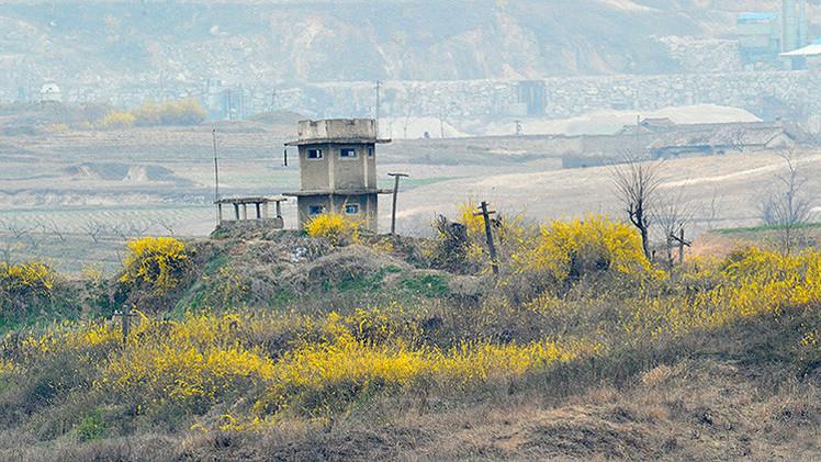 Corea del Norte: El árbol de Navidad de Seúl en la frontera es una declaración de guerra