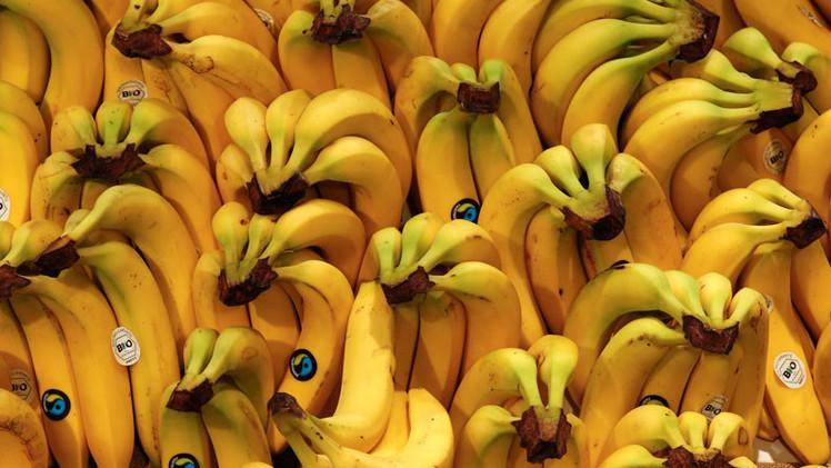 Cómo Bill Gates quiere controlar el mundo con sus súper plátanos transgénicos