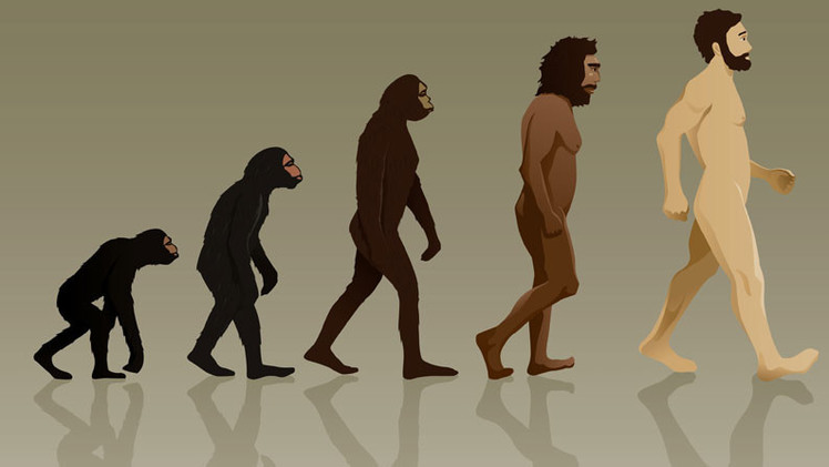 Mujeres hermosas y hombres altos: Cómo evolucionará el ser humano en el futuro