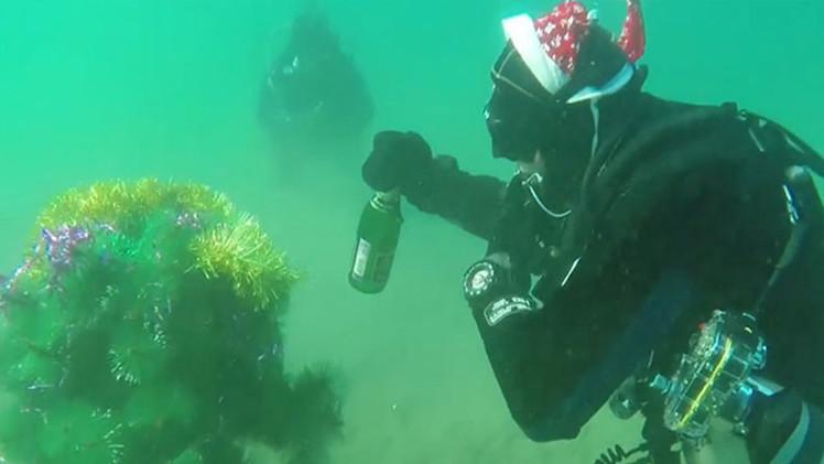 Video: Buzos rusos beben champán y bailan alrededor de árbol de navidad bajo el agua casi congelada