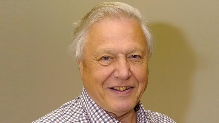 David Attenborough: La humanidad puede entrar en peligro de extinción