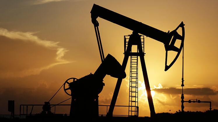 """""""Los bajos precios del petróleo permitirán reajustar la economía rusa"""""""