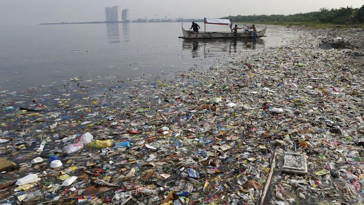 """Bióloga: """"En solo 50 años hicimos que el océano literalmente colapsara"""""""
