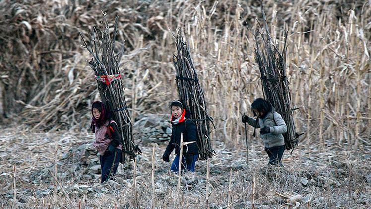 Obama promete a los estadounidenses derrocar al gobierno de Corea del Norte