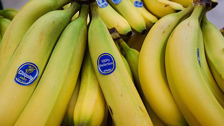 Bananas en peligro: 'Mal de Panamá' puede acabar con los plátanos