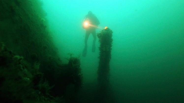 Hallan un bosque subacuático impresionante en el Mar del Norte