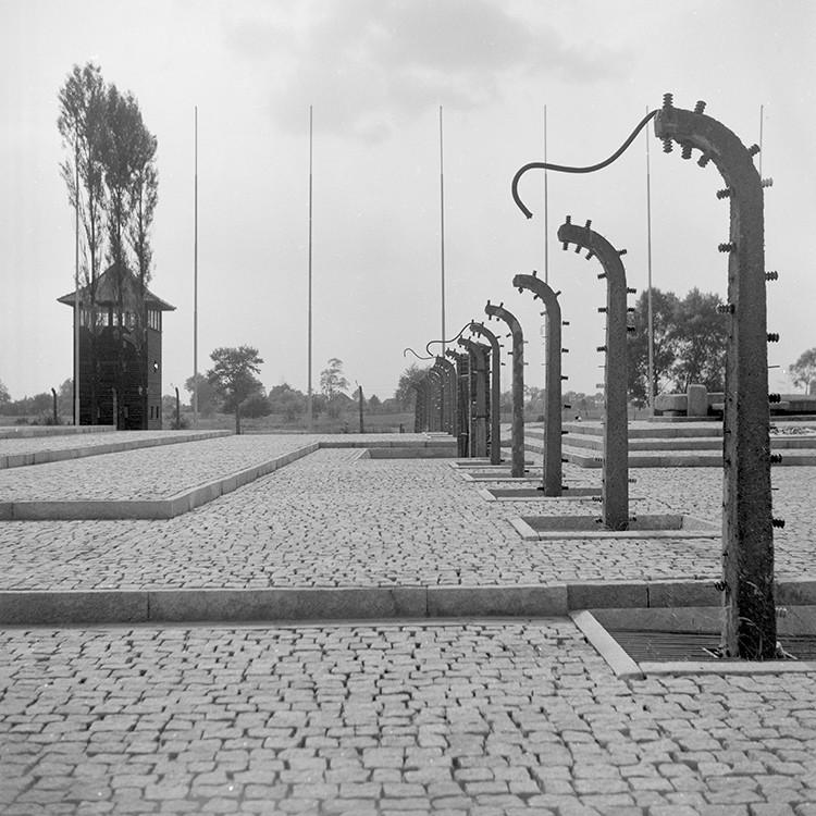 Auschwitz celebra el 70º aniversario de la liberación del
