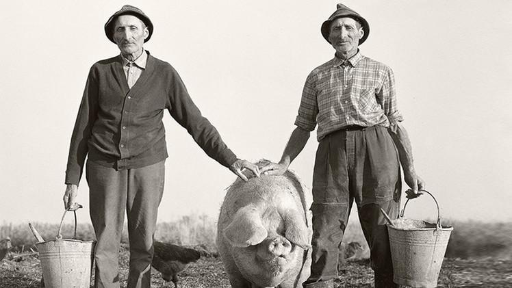 Fotos conmovedoras de mellizos agricultores al final de sus vidas