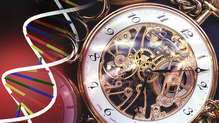 El ADN contiene pistas que predicen nuestra 'fecha de caducidad'