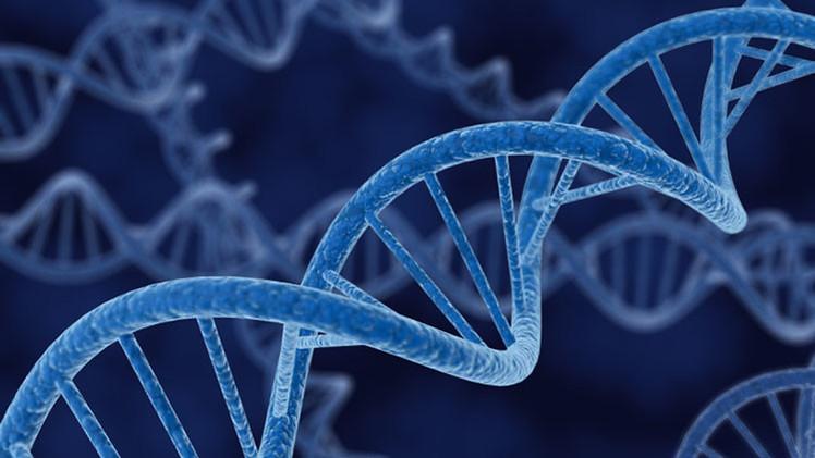 Científicos rusos logran averiguar el origen étnico y geográfico de una persona por su ADN