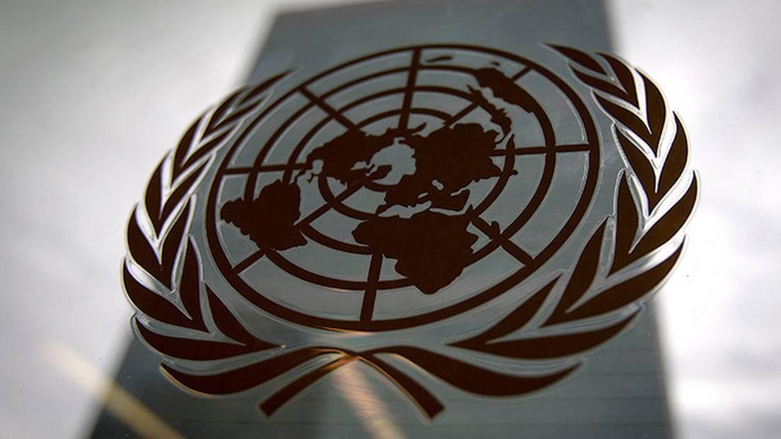 Organización de las Naciones Unidas (ONU) - RT