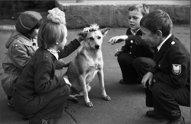 La corona del perro, Novokuznetsk