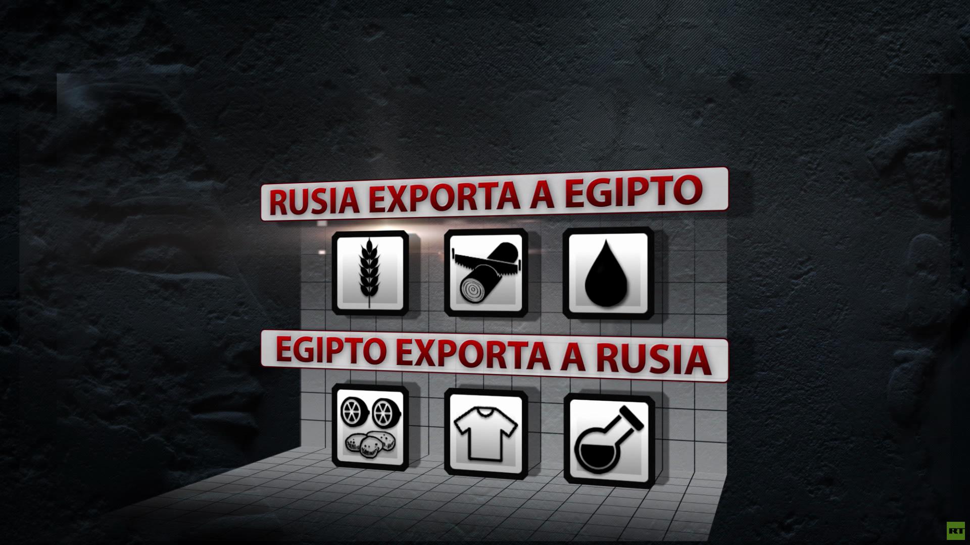 Infografía: ¿Cuáles son los puntos clave de la colaboración entre Rusia y Egipto?