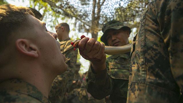 Un participante bebe sangre de serpiente