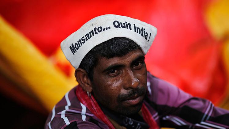Monsanto presiona a l Gobierno de la India para eliminar la prohibición de OMG