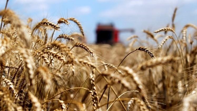 """Paul Craig Roberts a RT: """"Ucrania tendría que vender todas sus tierras a Monsanto para pagar al FMI"""""""