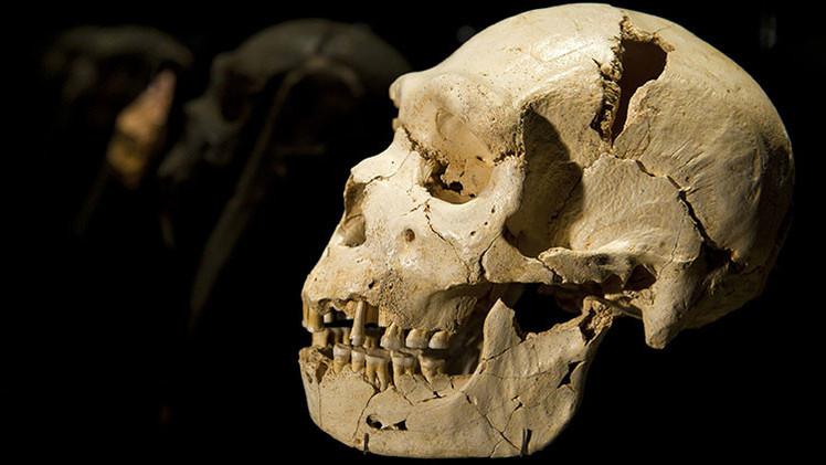Descubren en África los restos del representante más antiguo del hombre contemporáneo
